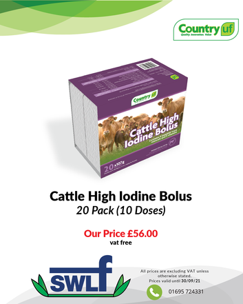 Cattle High Iodine Bolus-01.png