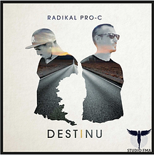 pochette disque Radikal Pro C.png