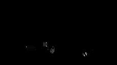 Racor Parker Stockist Spectrum Engineering Racor Parker Logo No Background.png