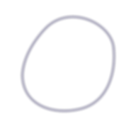 AAP Circle Navy Opaque Outline.png