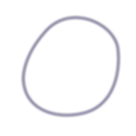 AAP Circle Navy Outline. png.png