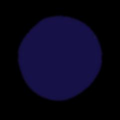 AAP Circle Navy.png