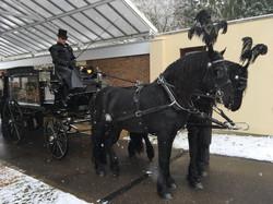 Horse drawn at Parndon Wood-004