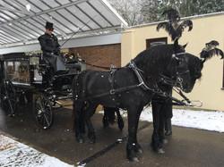 Horse drawn at Parndon Wood-005