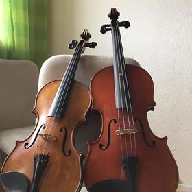 Bratsche - Viola