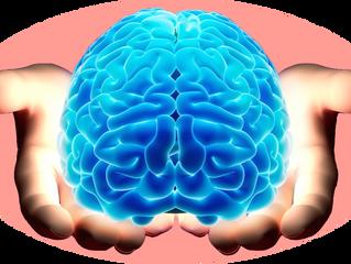 Heb jij al kennis gemaakt met je eigen 3 brein-generaties?
