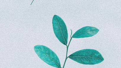Dia 05 | Quais os frutos? | 21 dias de Jejum