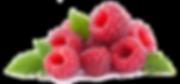 raspberries-(1).png