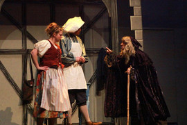 Into the Woods, Duluth Playhouse.jpg
