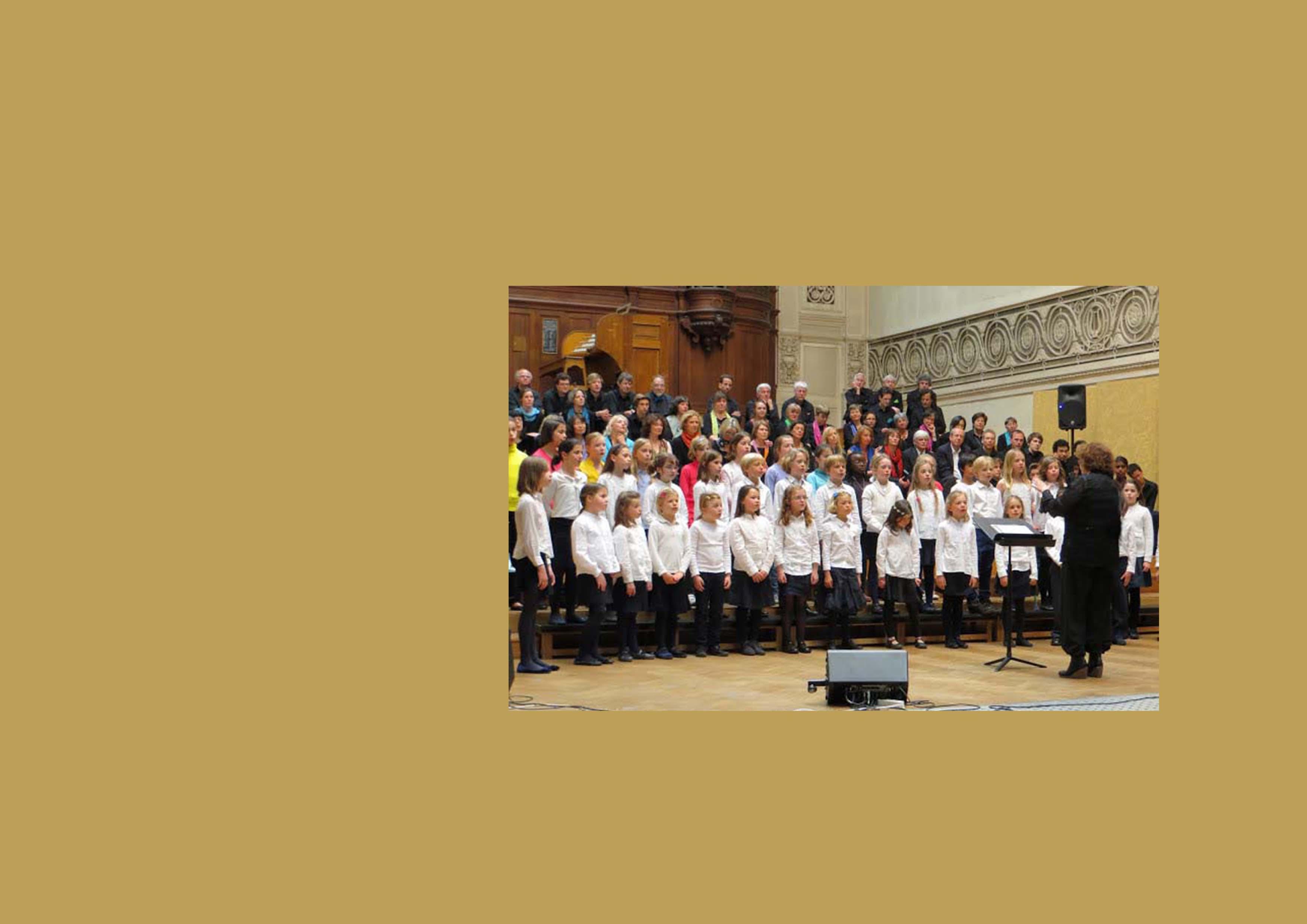 Concert à Bruxelles 2013