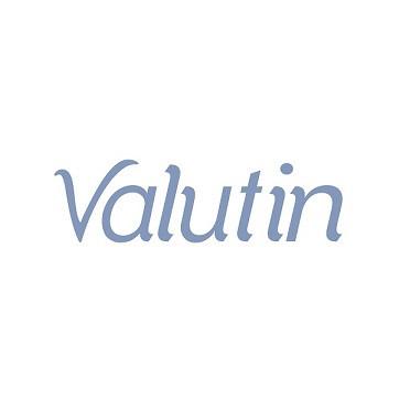 logotipo Valutin baixa.jpg