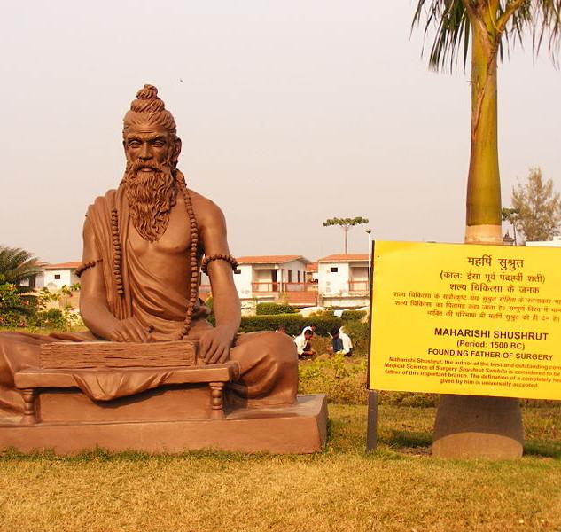 Shushrut_statue.jpg