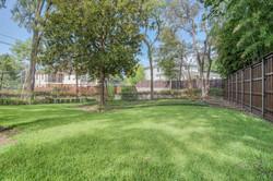 30 - back yard grass.jpg