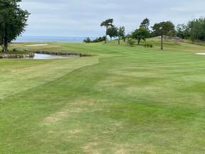 Sommar-golf år 2021 med AHN på Omberg