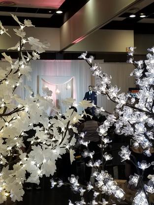 White Maple / Cherry Blossom Leaf