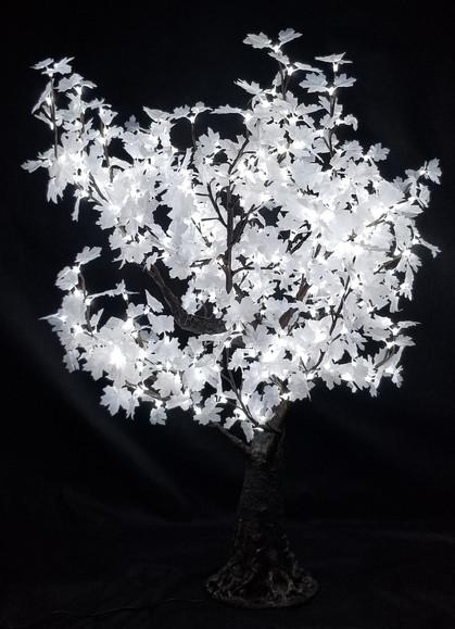 5 Foot - White Maple - Bright White