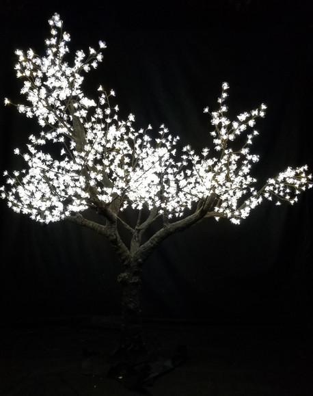 12 Foot - Cherry Blossom Soft White