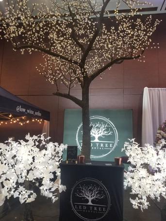 16' Foot- Cherry Blossom