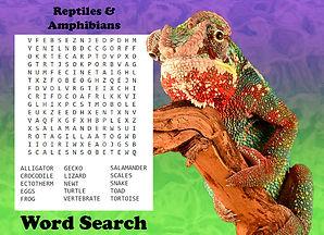 chameleon wordsearch.jpg