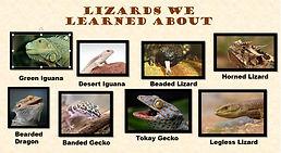 lizard presentation title slide.jpg