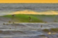 Surfer Swamis.jpg