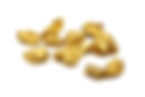 GoldNuggets_shutterstock.png