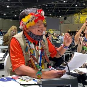 Amazonie : éviter le point de non-retour.