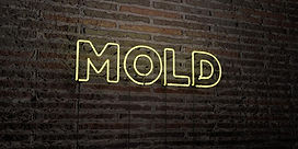 mold-realistic-neon-sign-brick-wall-back