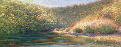 Redwood Creek II
