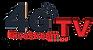 4g mic logo.png