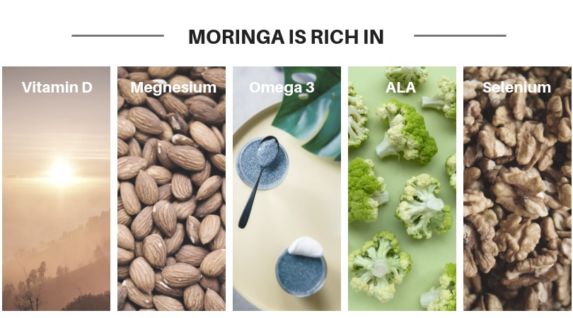 Vitamins and minerals Moringa is rich in