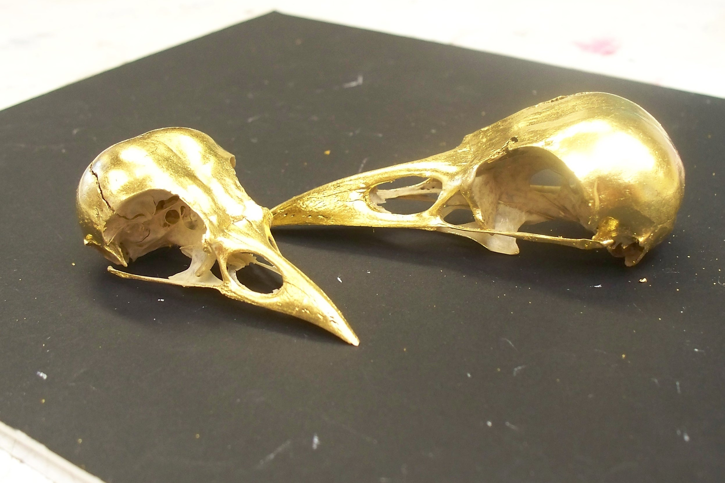 Gilded Bird Skulls