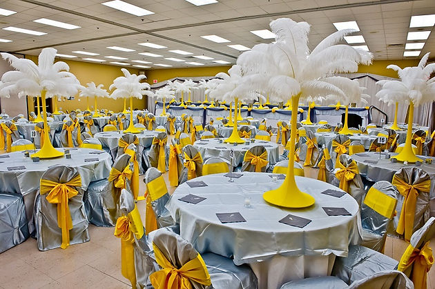 Enjoyable Ostrich Feathers And Ostrich Feather Centerpiece Rentals Download Free Architecture Designs Licukmadebymaigaardcom
