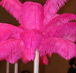 Rent Pink Feather Centerpiece $59