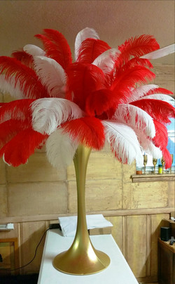 Rent Red Ostrich Feathers