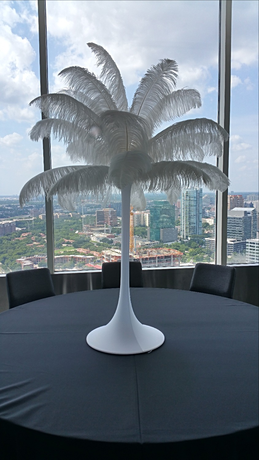 Rent White Ostrich feather