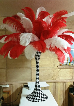 Red and White Ostrich Feathers