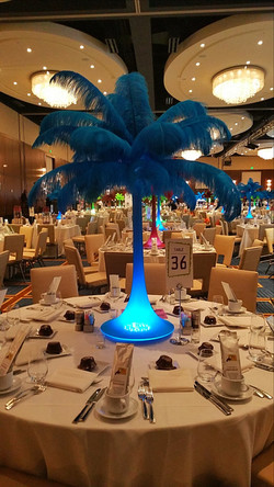 Turquoise Ostrich Feathers Rental