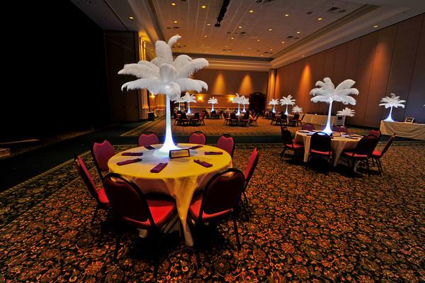 White Feather Wedding Rentals