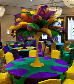 Mardi gras feathers rental