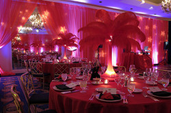 Ostrich Feathers Centerpieces Rental