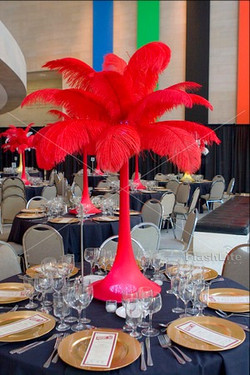 Valentine Ostrich Feathers