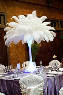 White Ostrich Feathers Rental