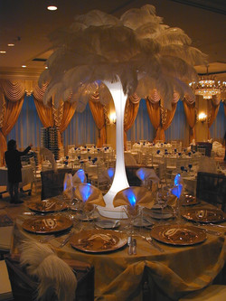 Ostrich Feathers for Event