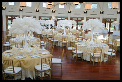 White Ostrich Feather Party