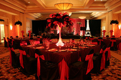 Red and Black Ostrich Feathers