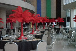 Red Ostrich Feathers Rentals
