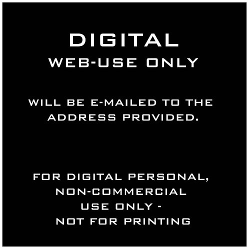 DIGITAL INDIVIDUAL - FOR WEB USE ONLY (NO PRINT)