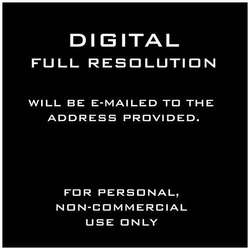 DIGITAL INDIVIDUAL - FULL RESOLUTION