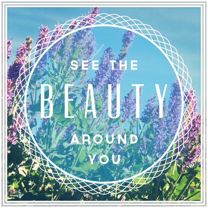 See the Beauty Around You